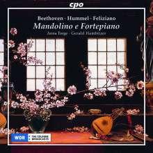 AA.VV.: Musica per mandolino e piano