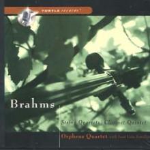 BRAHMS: Quartetti e Quintetti (2 cds)