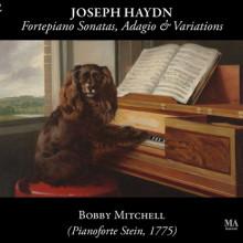 HAYDN: Fortepiano Sonatas - Adagio.....