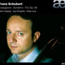 SCHUBERT: Arpeggione - Sonatina - Trio Op.99