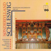 AA.VV.: Schleswig Organ Landscape