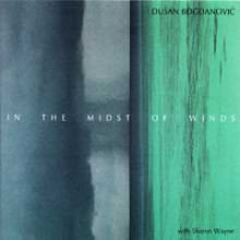 D.bogdanovic: In The Midst Of Winds
