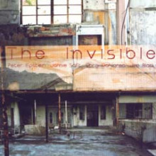 Peter Epstein: The Invisible