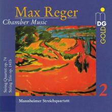 REGER: Musica da camera Vol.2