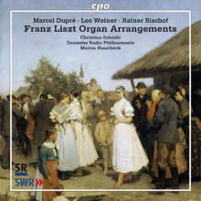 AA.VV.:Trascrizioni per organo su Liszt