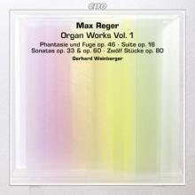 Reger: Opere Per Organo - Vol.1