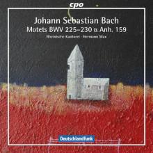 BACH: Mottetti BWV 225 - 230 & Anh. 159