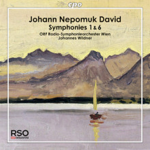 DAVID J.N.: Sinfonie NN. 1 & 6