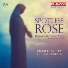 AA.VV.: Spotless rose - Inni alla Vergine