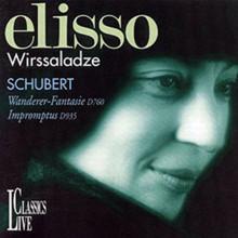 Schubert: Wanderer - Fantasie - Impromptus