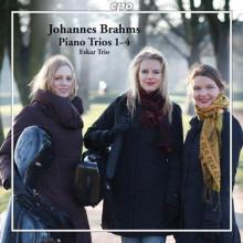 BRAHMSD: Trii con piano NN.1 - 4
