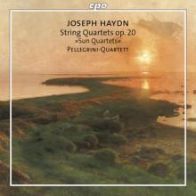 """HAYDN: Quartetti per archi """"Del Sole"""""""