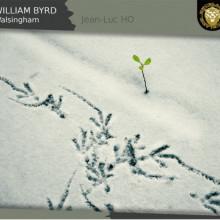 BYRD: Walsingham