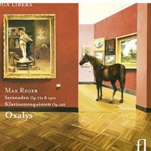 REGER: Serenata Op.141 & 77 - Quintetto