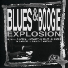 AA.VV.: Blues & Boogie Explosion