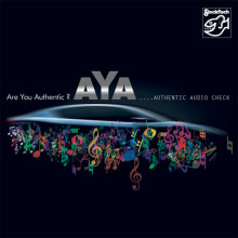 AA.VV.: Authentic Audio Check