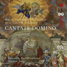 AA.VV.:Cantate Domino - mottetti e cantate