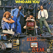THE WHO: Who Are You (Regular Weight 140 grammi)