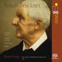 BRUCKNER: Opere orchestrali giovanili (arr. per organo)
