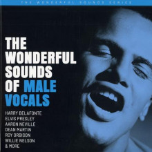 AA.VV. : The wonderful sounds of male vocals