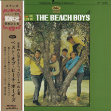 THE BEACH BOYS: The Best of the Beach Boys