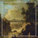 RIES: Integrale delle opere per flauto e archi - volume 3