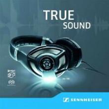 AA.VV:: True Sound - Sennheiser Sampler Vol.2